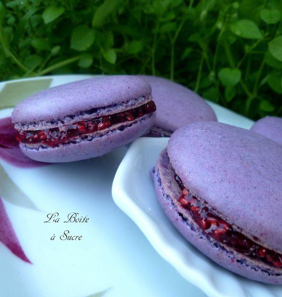 Macarons violette framboise