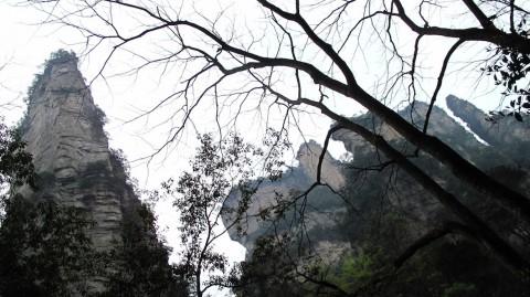 Zhangjiajie, beauté de karsts et de verdures 2