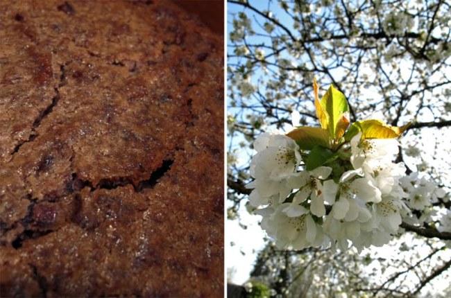 Fondant au Tsuban de Azuki, la pâte de haricots rouges japonais 2