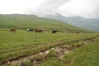 Voyage Bulgarie : Randonnée jusqu'aux 7 lacs et refuge Ivan Vasov 12