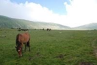 Voyage Bulgarie : Randonnée jusqu'aux 7 lacs et refuge Ivan Vasov 10