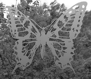 Roquefort Papillon, visite des caves ; terroirs de France en Aveyron 3