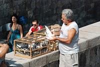 Plovdiv ; une ville incontournable en Bulgarie centrale 11