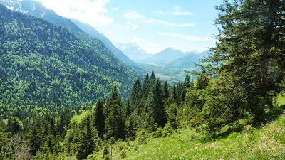 De Eschenlohe à l'Osterfeuerspitze ; balade bucolique en Bavière (Randonnée Allemagne) 31