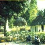 Histoire d'Haïti : un destin singulier 3