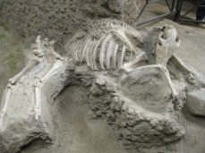Squelette à Pompéi