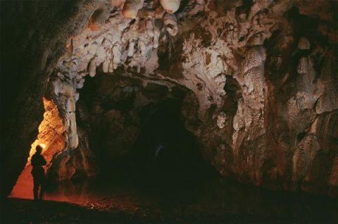 Grotte Coliboaia et art pariétal dans les monts Apuséni 3