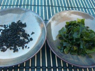 wakame algue japonaise