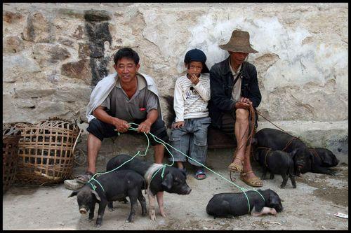 Du Yunnan à Yuanyang : Voyage Chine sur les « escaliers du ciel » 12