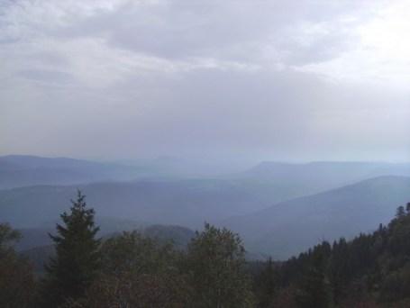 Les montagnes des Vosges et leur majestueuse forêt. Photo : Sébastien Perrot-Minnot.