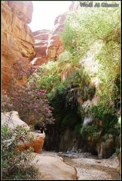 Wadi Al Ghouir Canyon (8)