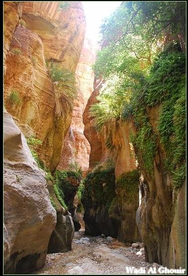 wadi Al Ghouir Canyon (9)