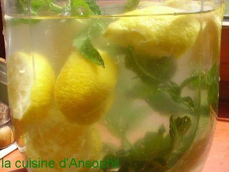 limonade citron menthe