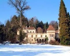 Chateau Miljana