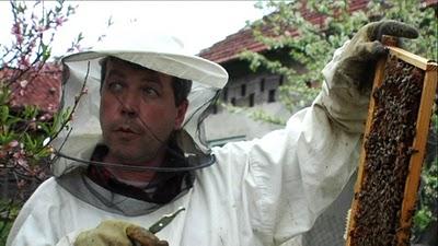 Serbie apiculteur