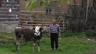 Serbie fermier et sa vache