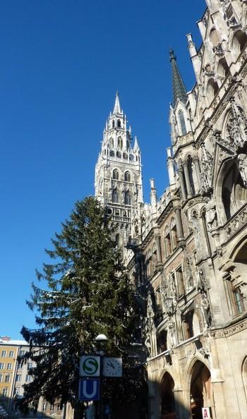 Munich cathedrale sapin
