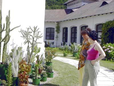 Tismana jardin