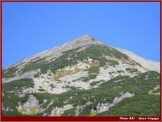 Mont retezat parc national roumanie