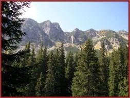 Retezat foret montagne parc national roumanie