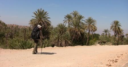 Amazigh (168)