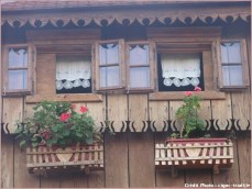 tradicije cigoc fenetre et fleurs