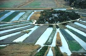 neretva irrigation