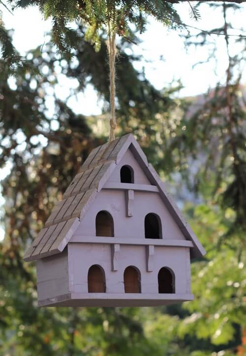 Maisonnette à oiseaux