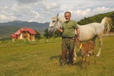 plitvice mrzlingrad branko et cheval
