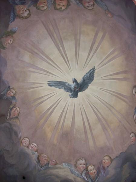 vienne Karlskirche colombe
