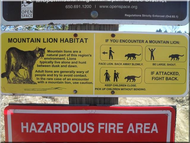 habitat protégé des lions
