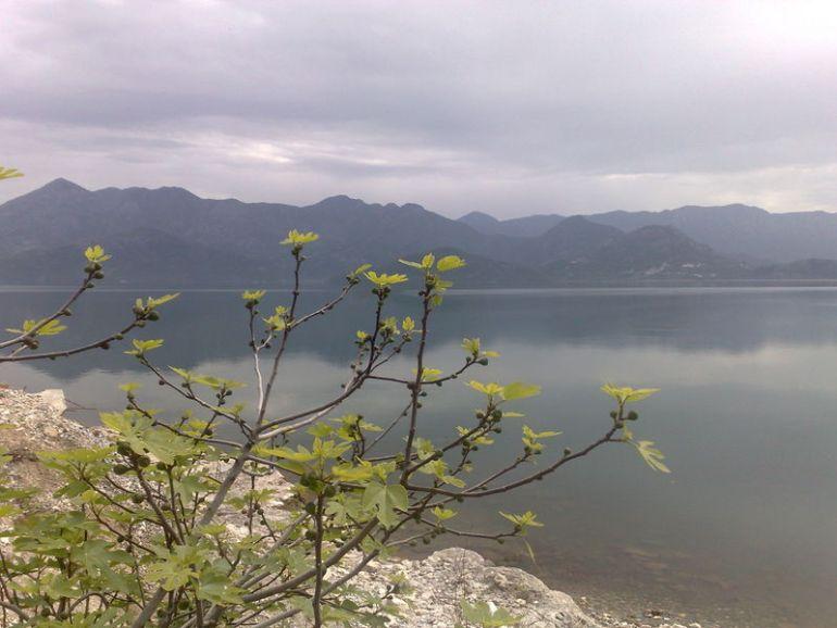 lac de skadar montenegro
