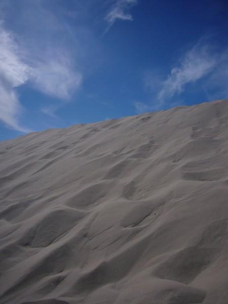 skagen dunes