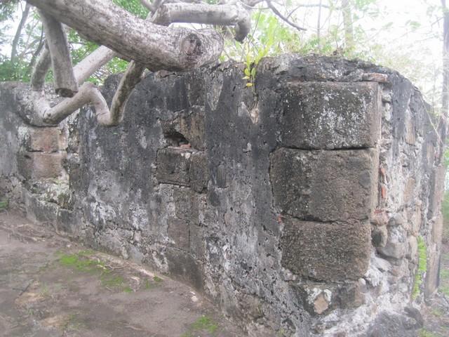 Batterie de Case-Pilote Martinique