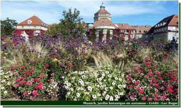 Jardin botanique de Munich fleurs au debut de l'automne
