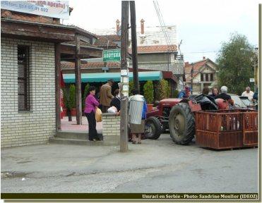 Umraci scene de vie près d'un marché en Serbie