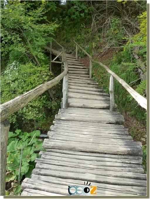 Plitvice escalier en rondins
