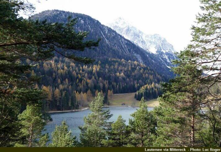 foret-dautomne-au-lac-lautersee