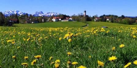 Seeg Honigdorf sudallgau en bavière
