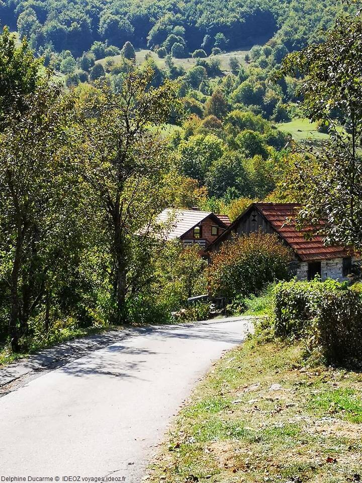 Route vers le refuge d'ours de Kuterevo