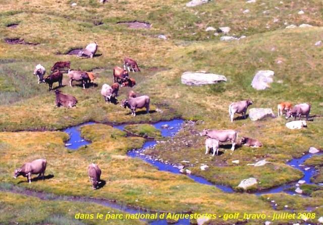 Pyrénées espagnoles: sauvages et grandioses 9
