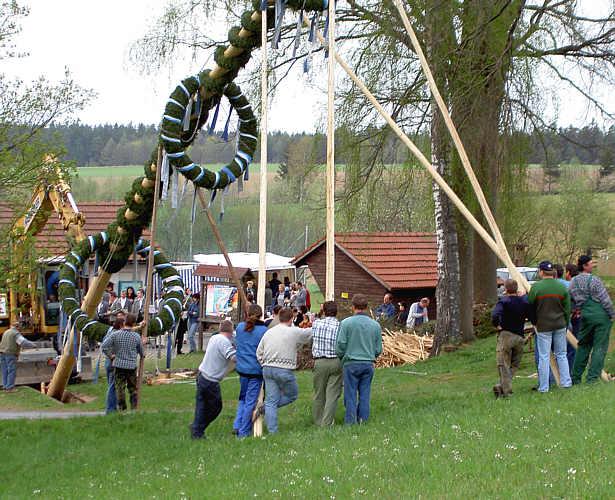 Erection d'un arbre de mai à Pfaffenreuth