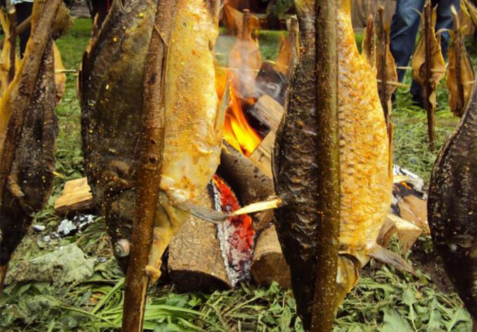 Stara Lonja poissons rôtis sur les piques