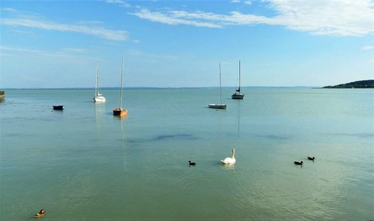 Voiliers sur le lac Balaton