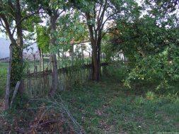 Arilje jardin (1)