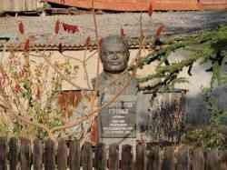 Krcedin buste