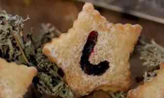 linzer platzchen biscuits de noel autrichiens inspirés de la Linzer Torte