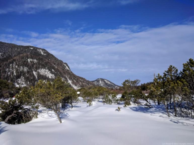 Nature à Riebdoben et Mittenwald