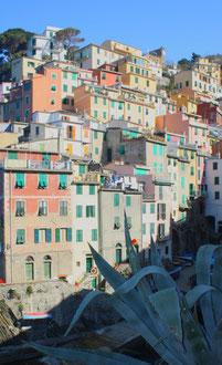Cinque Terre, la Riviera Ligure du Levant (Voyage Italie) 16