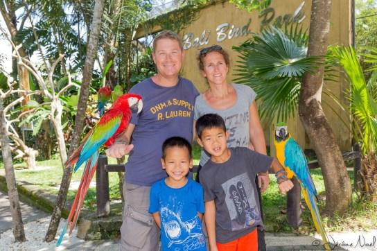 Bali Bird Park - Famille & perroquets
